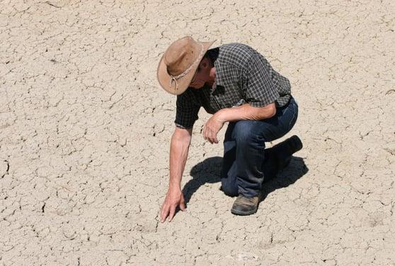 West_Coast_drought-drip-irrigation_lores